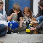ワンちゃん足を瞬間洗浄Paw Wash