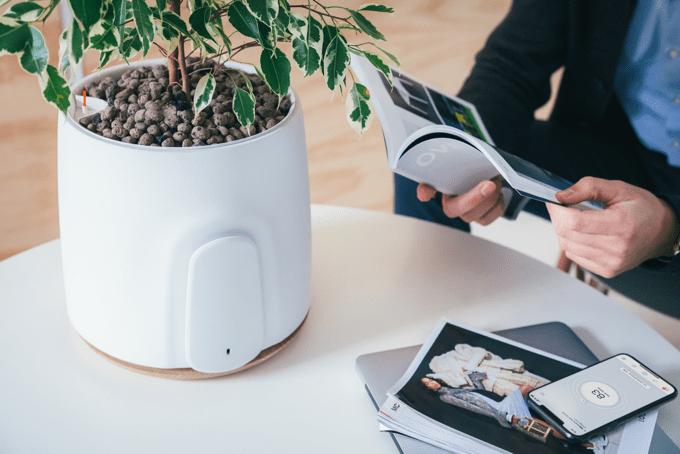 フィルター交換必要なし植物空気清浄機NATEDE