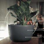 植物を育てながら空気を清浄するUrbie Air